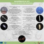 Nevertebrate de apă dulce invazive din România